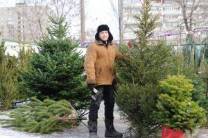В Архангельской области начали работать ёлочные базары