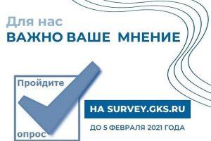 Росстат приглашает принять участие в анкетировании