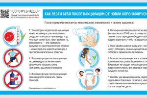 Чего нельзя делать после прививки: Роспотребнадзор опубликовал рекомендации для вакцинировавшихся от COVID