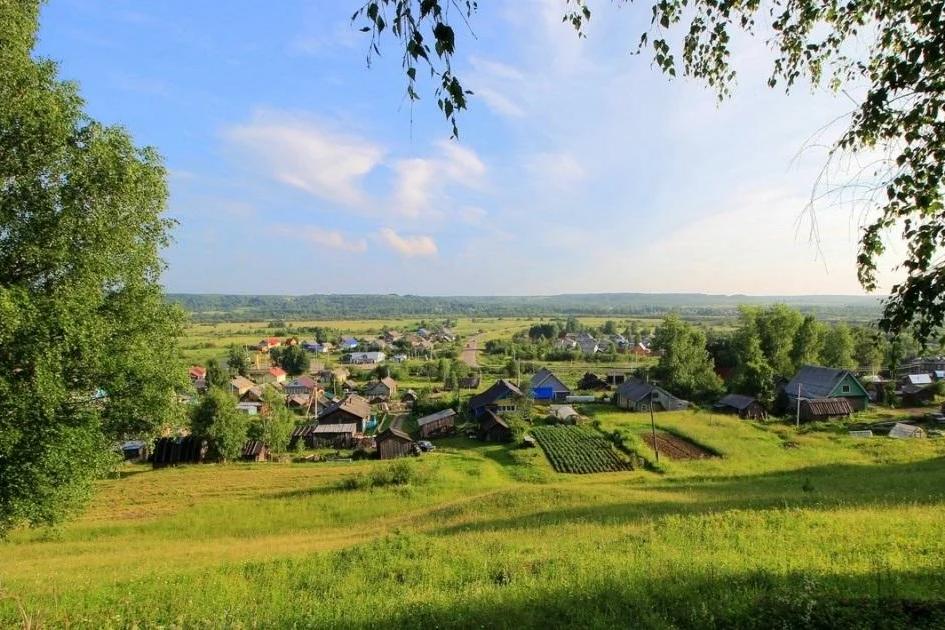 В Архангельской области можно заключить социальный контракт на ведение личного подсобного хозяйства